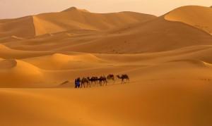 Sahara - Die Grüßte heiße Wüste der Welt
