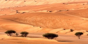 die Arabische Wüste