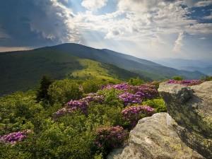 Der Appalachian Trail - Der längste Wanderweg der Welt